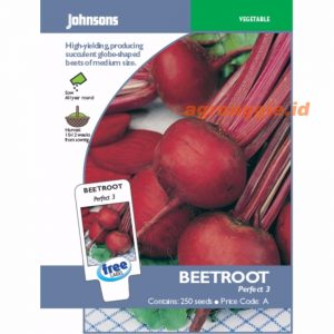 Beetroot Perfect 3