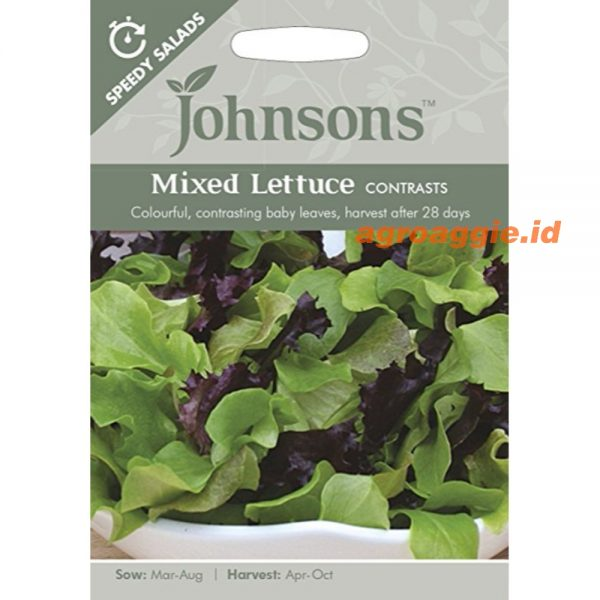MIXED LETTUCE Contrasts