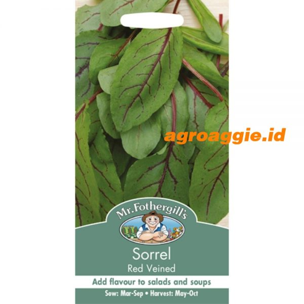 100519 Sorrel Red Veined