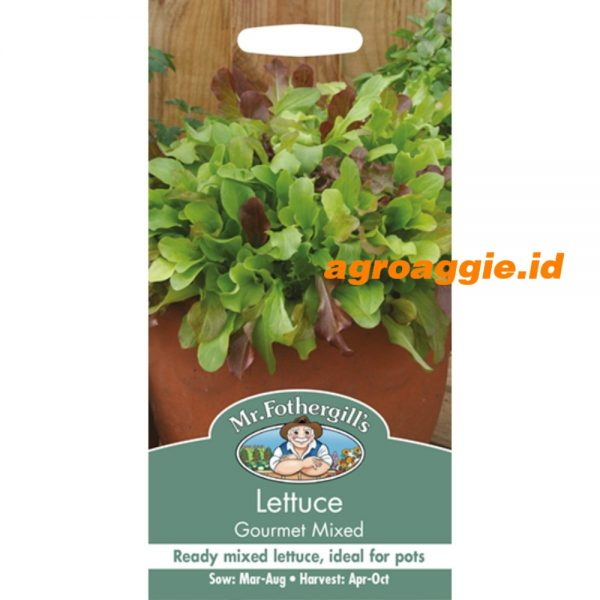 100928 Lettuce Gourmet Mixed