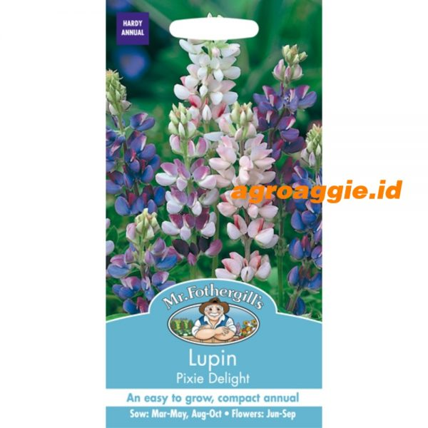 101208 Lupin Pixie Delight