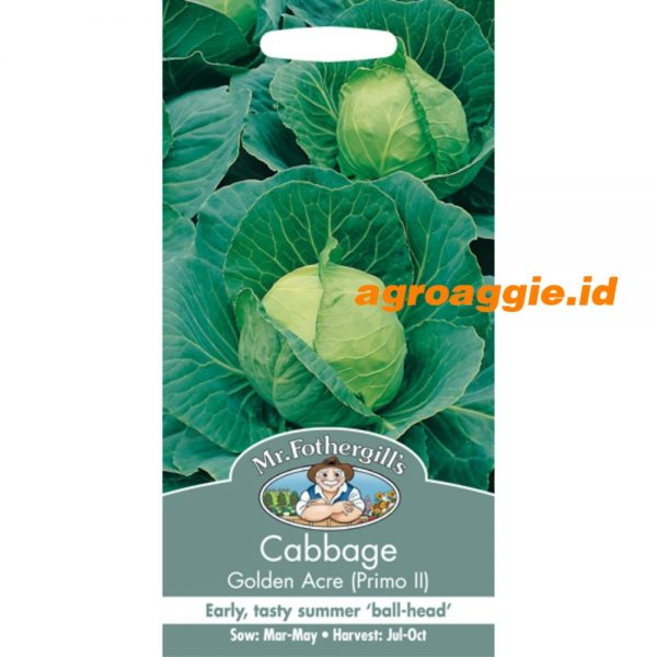 101673 Cabbage Golden Acre Primo 2