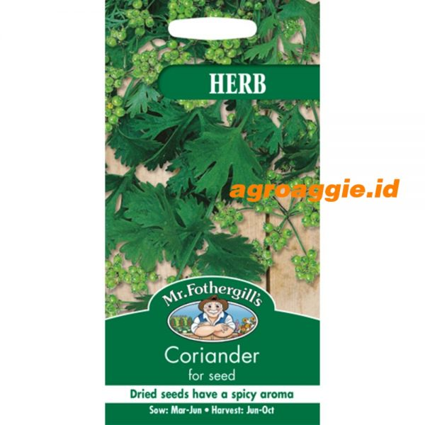 101932 Coriander For Seed Herb