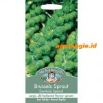 102128 Brussels Sprout Evesham Special
