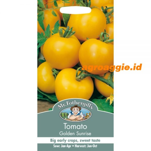 102540 Tomato Golden Sunrise
