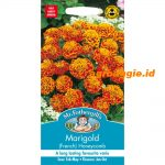102672 Marigold French Honeycomb