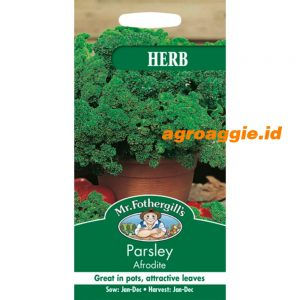 102897 Parsley Aphrodite Herb