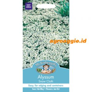 103241 Alyssum Snow Cloth