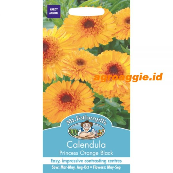 103250 Calendula Princess Orange Black