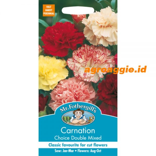103724 Carnation Choice Double Mixed