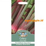 103729 Celery Giant Red