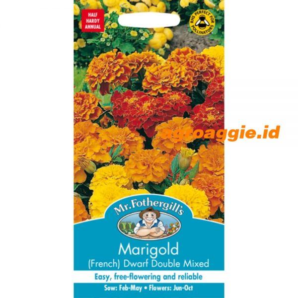 103805 Marigold French Dwarf Double Mixed