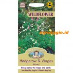 104155 Hedgerow Verges Wildflower