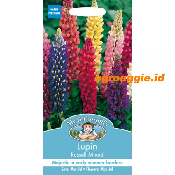 104882 Lupin Russell Mixed