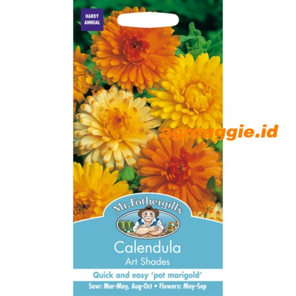 105127 Calendula art shades