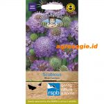105369 RSPB Scabious Blue Cushion