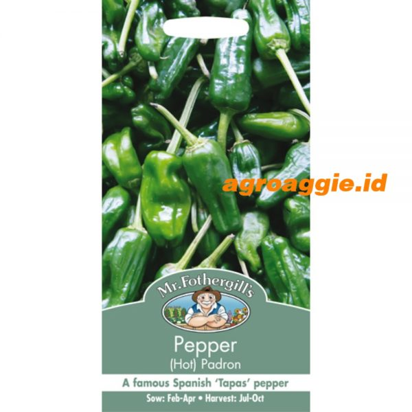 105633 Pepper Hot Padron