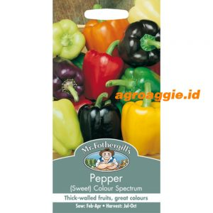 105714 Pepper Sweet Colour Spectrum