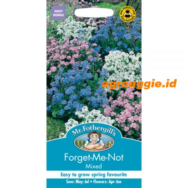 105944 Forget Me Not Mixed