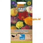 105996 RSPB California Poppy Single Mixed