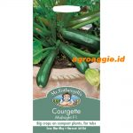 106297 Courgette Midnight F1