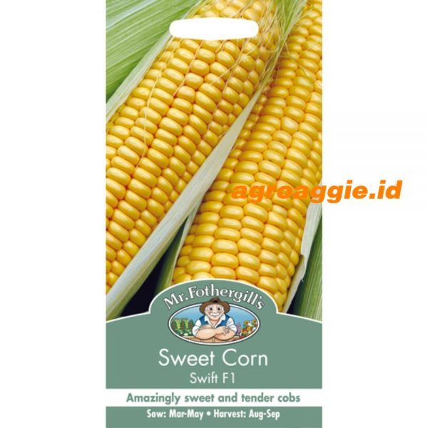 106476 Sweet Corn Swift F1