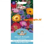107440 Mixed Annuals