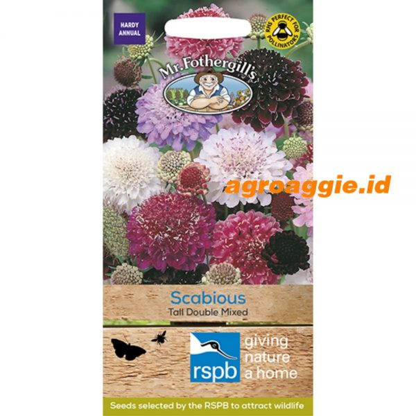 107862 RSPB Scabious Tall Double Mixed