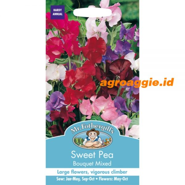 107939 Sweet Pea Bouquet Mixed
