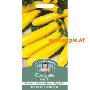 108564 Courgette Soleil F1