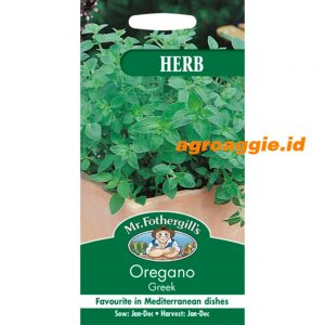 108603 Oregano Greek Herb