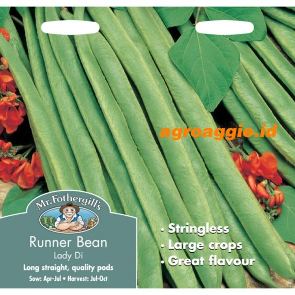 109135 Runner Bean Lady Di Stringless