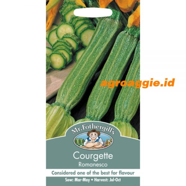 109209 Courgette Romanesco