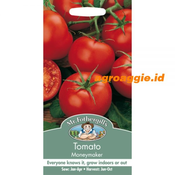 111105 Tomato Moneymaker