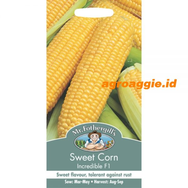 112009 NDT Sweet Corn Incredible
