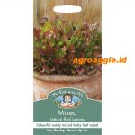112042 Mixed Lettuce Red Leaves