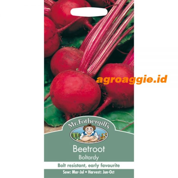 112465 Beetroot Boltardy
