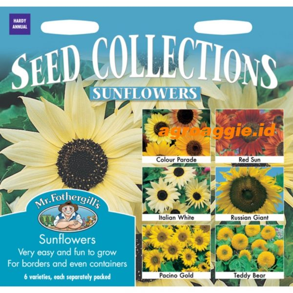 112543 Sunflowers Collection