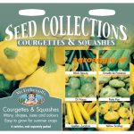 112564 Courgette Squashes Collection