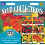 112595 Nasturtiums Collection