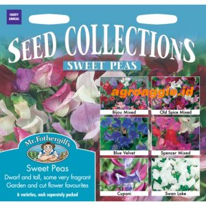112603 Sweet Peas Collection