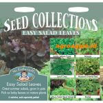 112614 Easy Salad Leaves Collection
