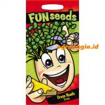 113653 Fun Cress Heads