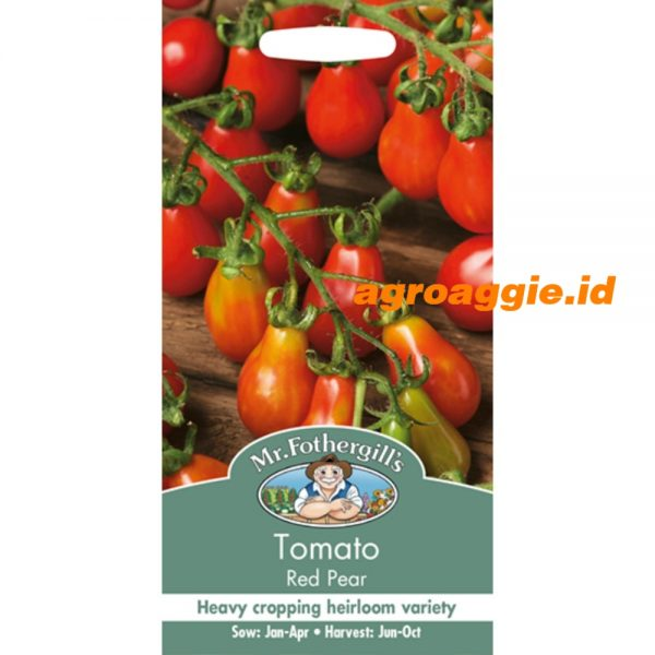 114822 Tomato Red Pear