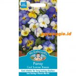 117684 Pansy Cool Summer Breeze