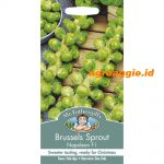 117692 Brussels Sprout Napoleon F1