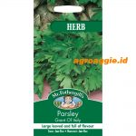 117964 Parsley Giant of Italy Herb