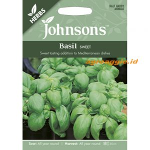 121019 Basil Sweet Herb