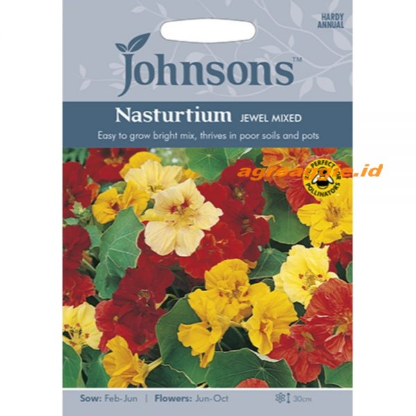 121081 Nasturtium Jewel Mixed