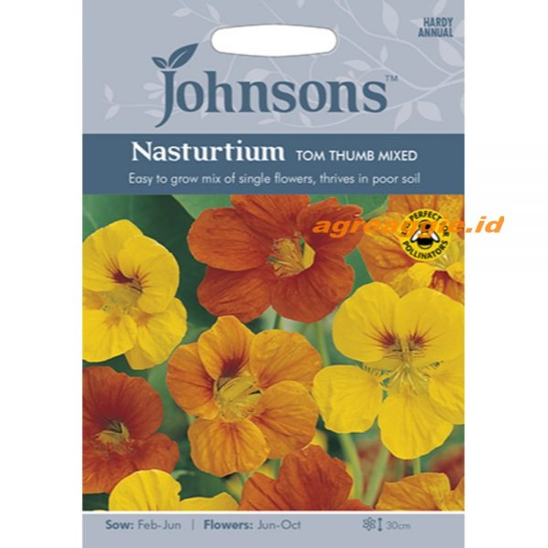 121119 Nasturtium Tom Thumb Mixed